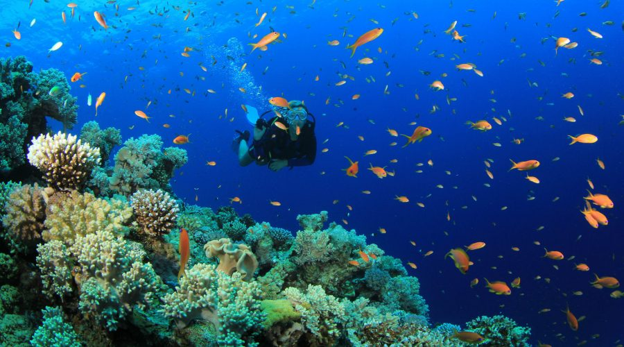 Explore Belitung 5
