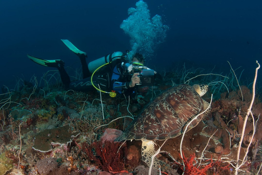 Scuba Diving Amed Bali