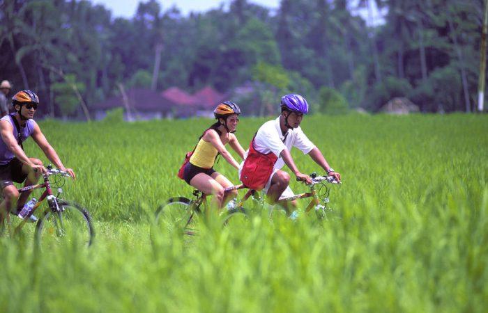 Sewa Ssepeda di Bali