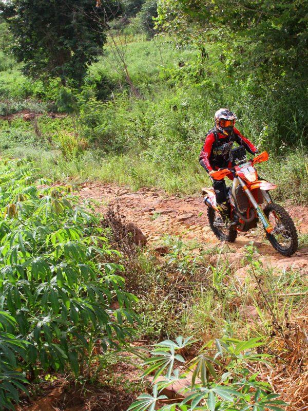 Sewa KLX di Bali untuk Tour dan Adventure Hutan