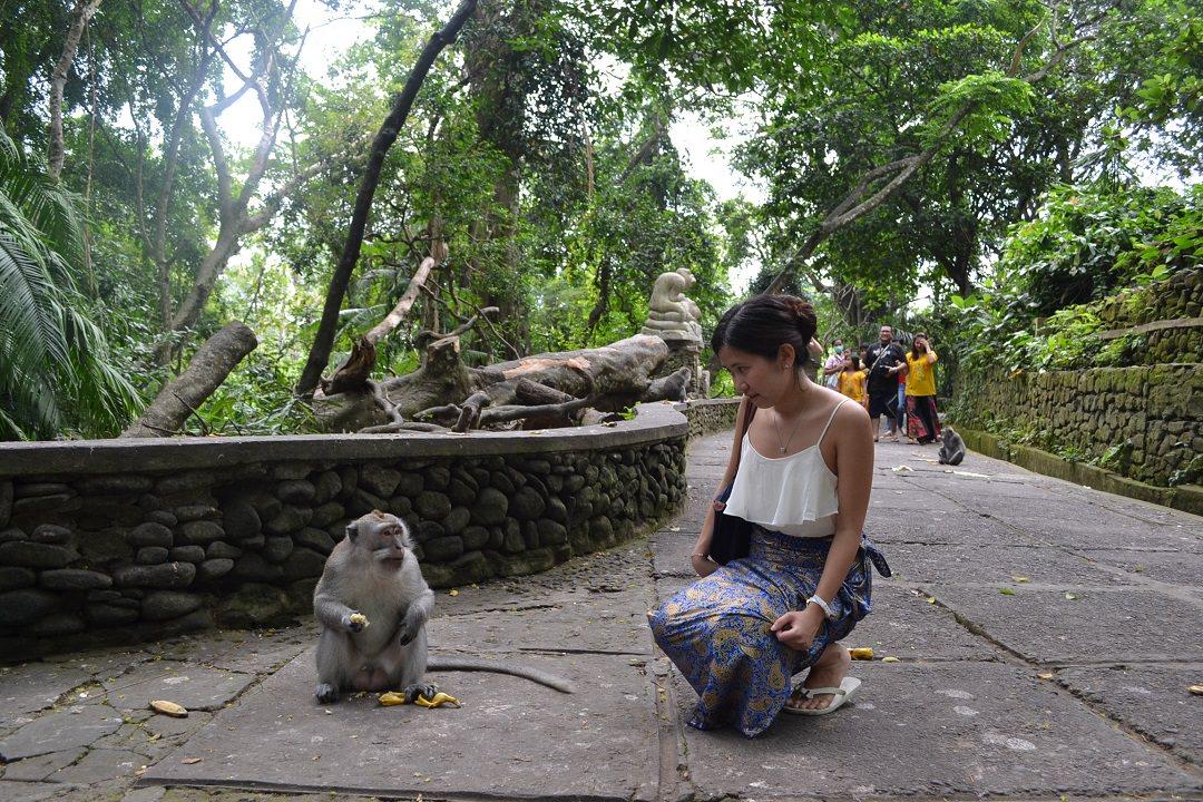 Tour Bali Monkey Forest Harga Termurah